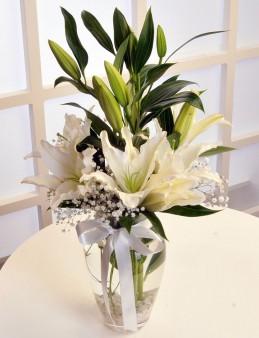 Beyaz Lilyumun Zarafeti  çiçek gönder