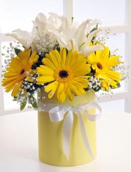 Sarı Silindir Kutuda Beyaz Lilyum ve Sarı Gerberalar  çiçek gönder