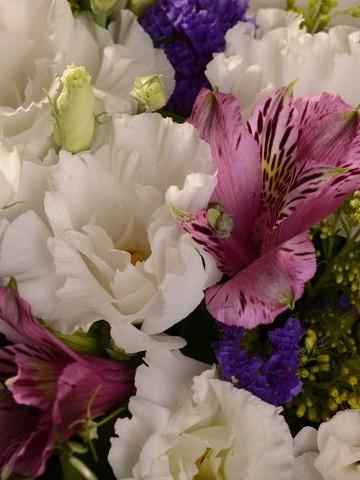 Renkli Yaz Kutuda Çiçek çiçek gönder