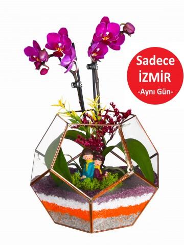 Geometrik Camda Mini Orkide Orkideler çiçek gönder