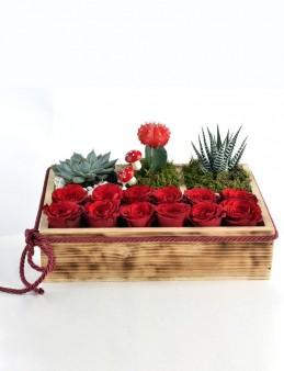 Teraryum ve Kırmızı Güller  çiçek gönder