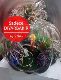 Kabak Yapay Terrarium 3  çiçek gönder