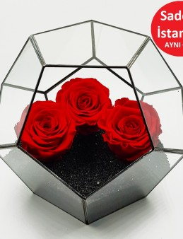 Geometrik Teraryum Solmayan Güller  Siyah İnci  çiçek gönder