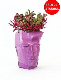 Dekoratif Vazoda Teraryum Aranjmanı Terarium çiçek gönder