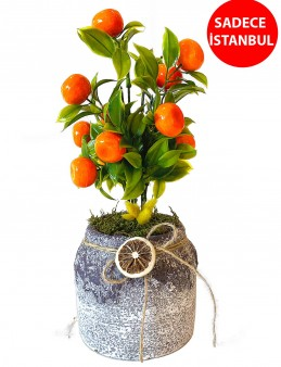 Yapay Mandalina Ağaçı  çiçek gönder