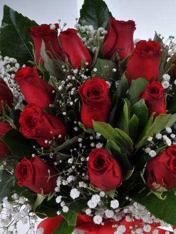Vazoda 15 Kırmızı Gül Aranjmanı Aranjmanlar çiçek gönder
