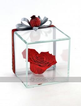 Harika Ötesi Kalpli Solmayan Gül  çiçek gönder