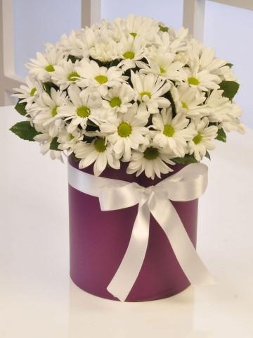 Papatya Güzeli Kutuda Çiçek çiçek gönder