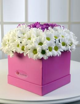 Pembe Kare Kutuda Beyaz Biçmeler  çiçek gönder