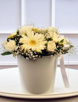 Beyaz Meleğime  çiçek gönder