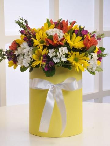 Kır Bahçesi Kutuda Çiçek çiçek gönder