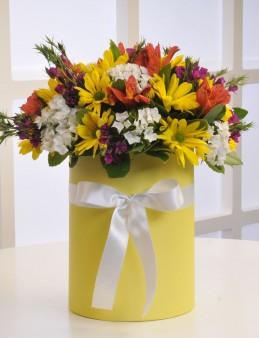 Sarı Silindir Kutuda Kır Çiçekleri  çiçek gönder