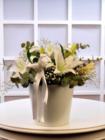 Beyaz Esinti Aranjmanlar çiçek gönder