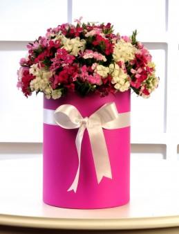 Rengarenk.  çiçek gönder