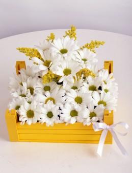 Ahşap Kasa da Beyaz Papatyalar  çiçek gönder