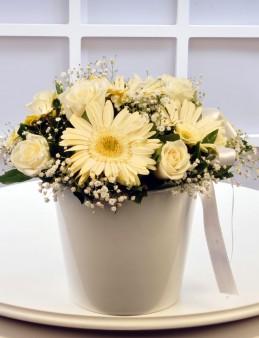 Beyaz Meleğime.   çiçek gönder
