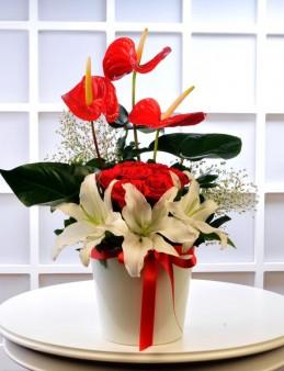 Kalbimin İçi   çiçek gönder