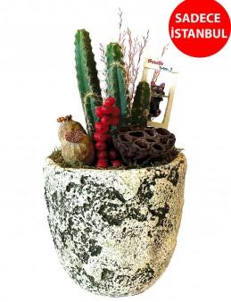 Antik Teraryum Aranjmanı Terarium çiçek gönder