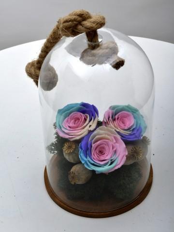 Aşkını Gökyüzüne Yazdım Solmayan Renkli Güller Solmayan Güller  çiçek gönder