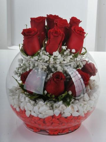 Fanus Vazoda 11 Kırmızı Gül Aranjmanı.. Aranjmanlar çiçek gönder