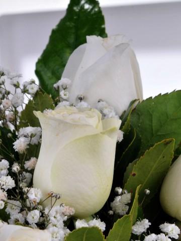 Vazoda 7 Beyaz Gül Aranjmanlar çiçek gönder