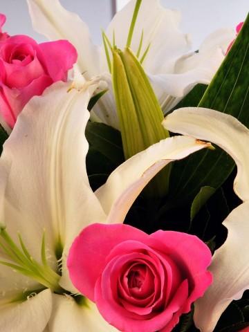 Pembenin Efsanesi Kutuda Çiçek çiçek gönder