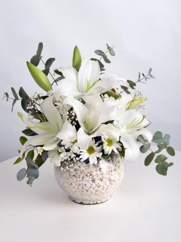 Lilyum Zarafeti. Aranjmanlar çiçek gönder