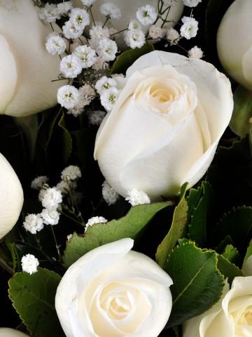 Vazoda 17 Beyaz Gül.. Aranjmanlar çiçek gönder