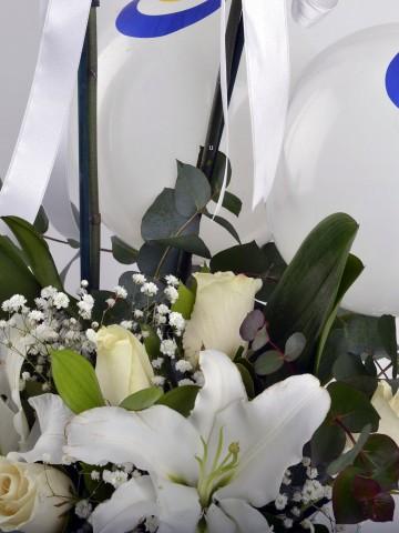 Bembeyaz Bir Gökyüzü Orkideler çiçek gönder