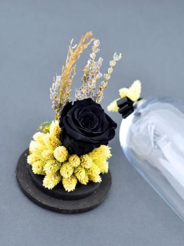 Şimdi Başka Bahar  Solmayan Güller  çiçek gönder