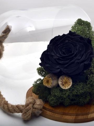 Bir Tek Sen Varsın Solmayan Siyah Gül Solmayan Güller  çiçek gönder