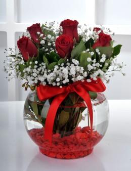 Fanus Vazoda 7 Kırmızı Gül Arajmanı..  çiçek gönder
