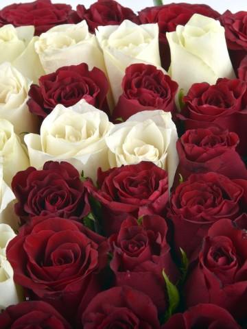 Güllere Yazdım Baş Harfini Kişiye Özel Gül Arajmanı. Kutuda Çiçek çiçek gönder
