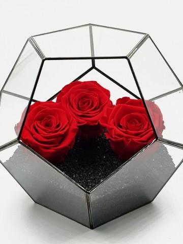Geometrik Teraryum Solmayan Güller  Siyah İnci Solmayan Güller  çiçek gönder