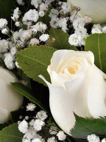 Vazoda 9 Beyaz Gül Çiçek Arajmanı. Aranjmanlar çiçek gönder