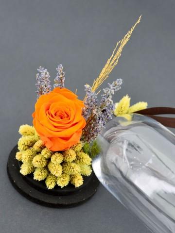 En Güzel Hikayem Solmayan Gül Solmayan Güller  çiçek gönder