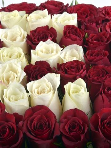 Kutuda Kişiye Özel Güllerden Oluşan Harf Çiçek.. Harfli Çiçek çiçek gönder