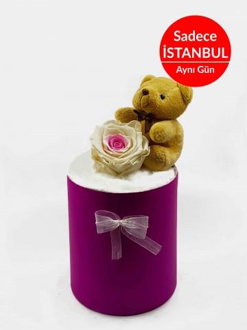 Kutuda Solmayan Gül Terarium çiçek gönder