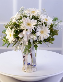 Amfora Cam Vazoda Beyaz Gerbera Aranjmanı.  çiçek gönder