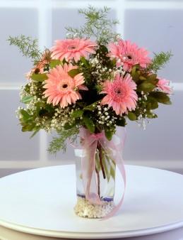 Amfora Cam Vazoda Pembe Gerbera Aranjmanı.  çiçek gönder