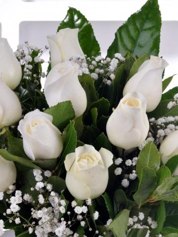 Silindir Vazoda 11 Beyaz Gül Arajmanı.. Aranjmanlar çiçek gönder