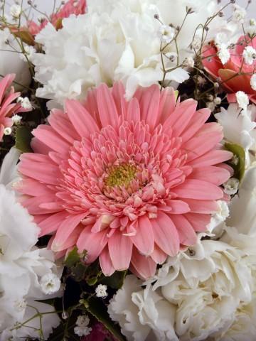 Akvaryumda Beyaz Karanfil ve Pembe Gerberalar Aranjmanlar çiçek gönder