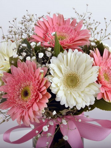 Hayallerimin  Prensesi Gerbera Çiçek Arajmanı Aranjmanlar çiçek gönder