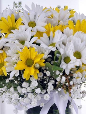 Kış Güneşi Kır Çiçekleri Aranjmanlar çiçek gönder