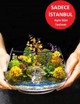 Aşk Köprüsü Teraryum  çiçek gönder