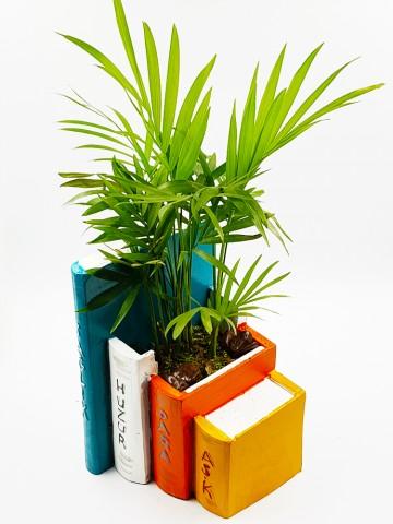 Kitap Saksı Chamadore (Yapay) Terarium çiçek gönder