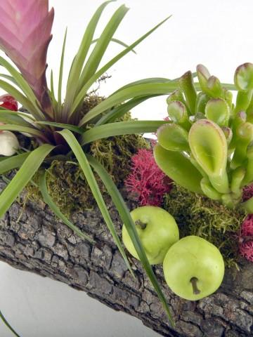 Doğa Harikası Teraryum Terarium çiçek gönder