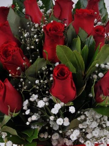 Vazoda 17 Kırmızı Gül. Aranjmanlar çiçek gönder