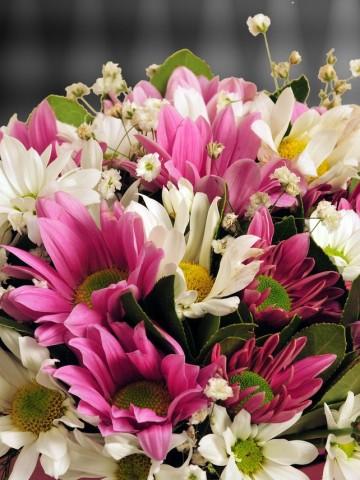Pembe Silindir Kutuda Bahar Çiçekleri Kutuda Çiçek çiçek gönder