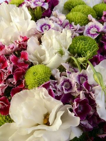 Ada Sahilleri Kutuda Çiçek çiçek gönder